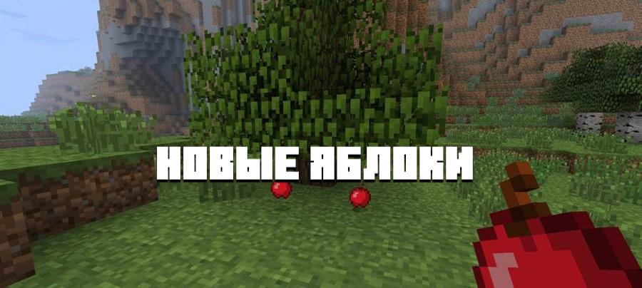 новые яблоки